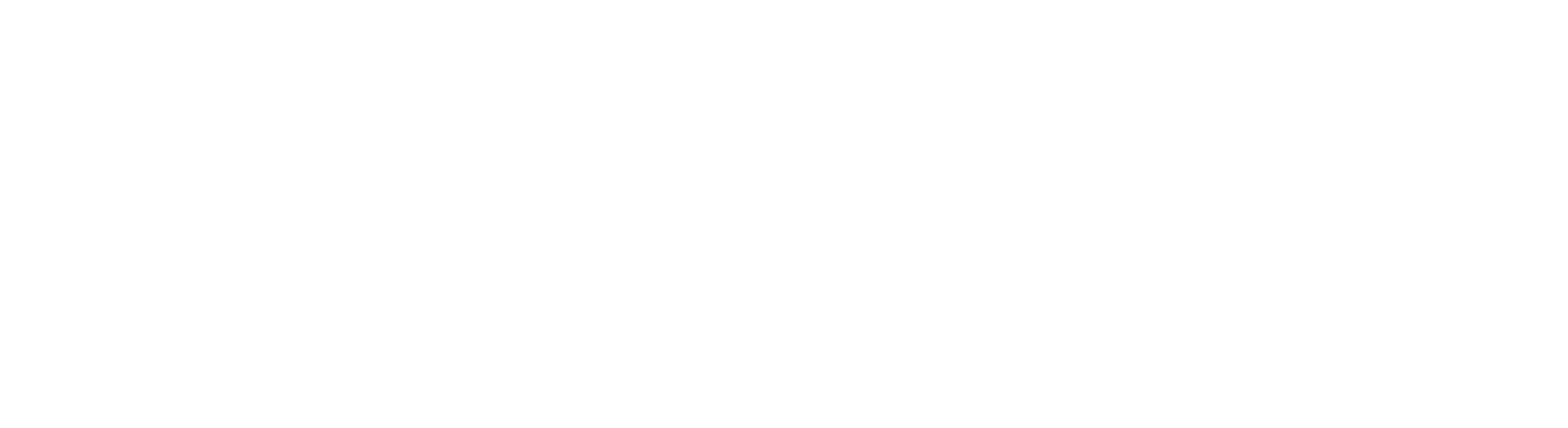 logo ValoraData blanco
